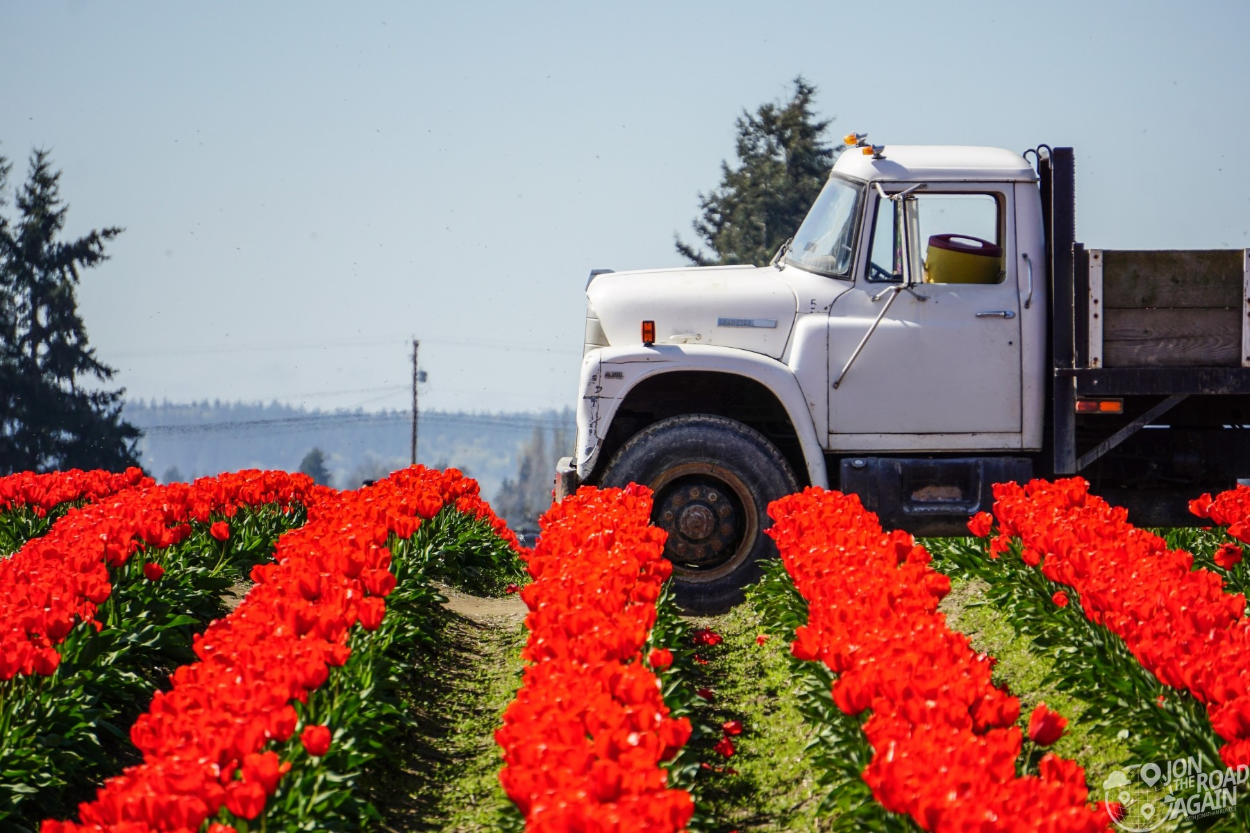 Tulip truck at Roozengaarde