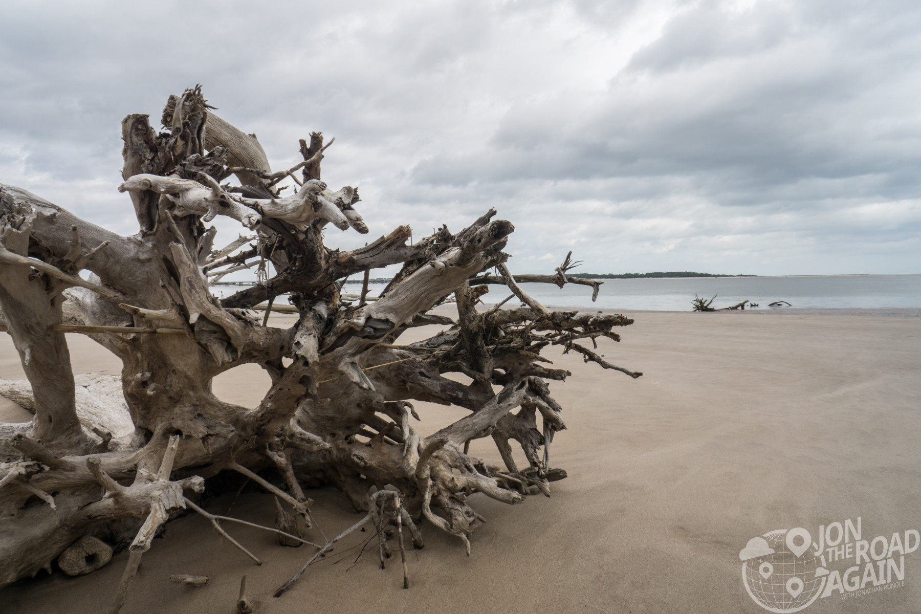 Boneyard beach at Big Talbot Island