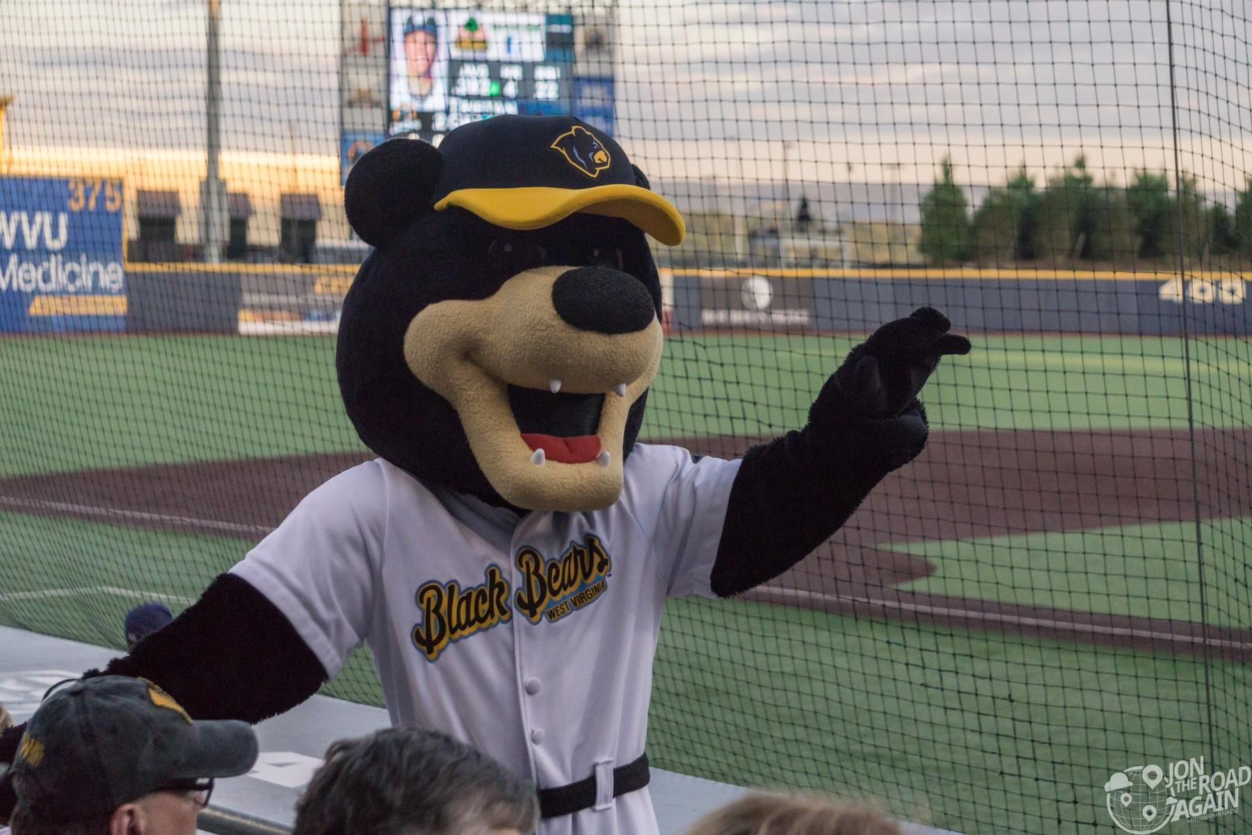 West Virginia Black Bears Mascot