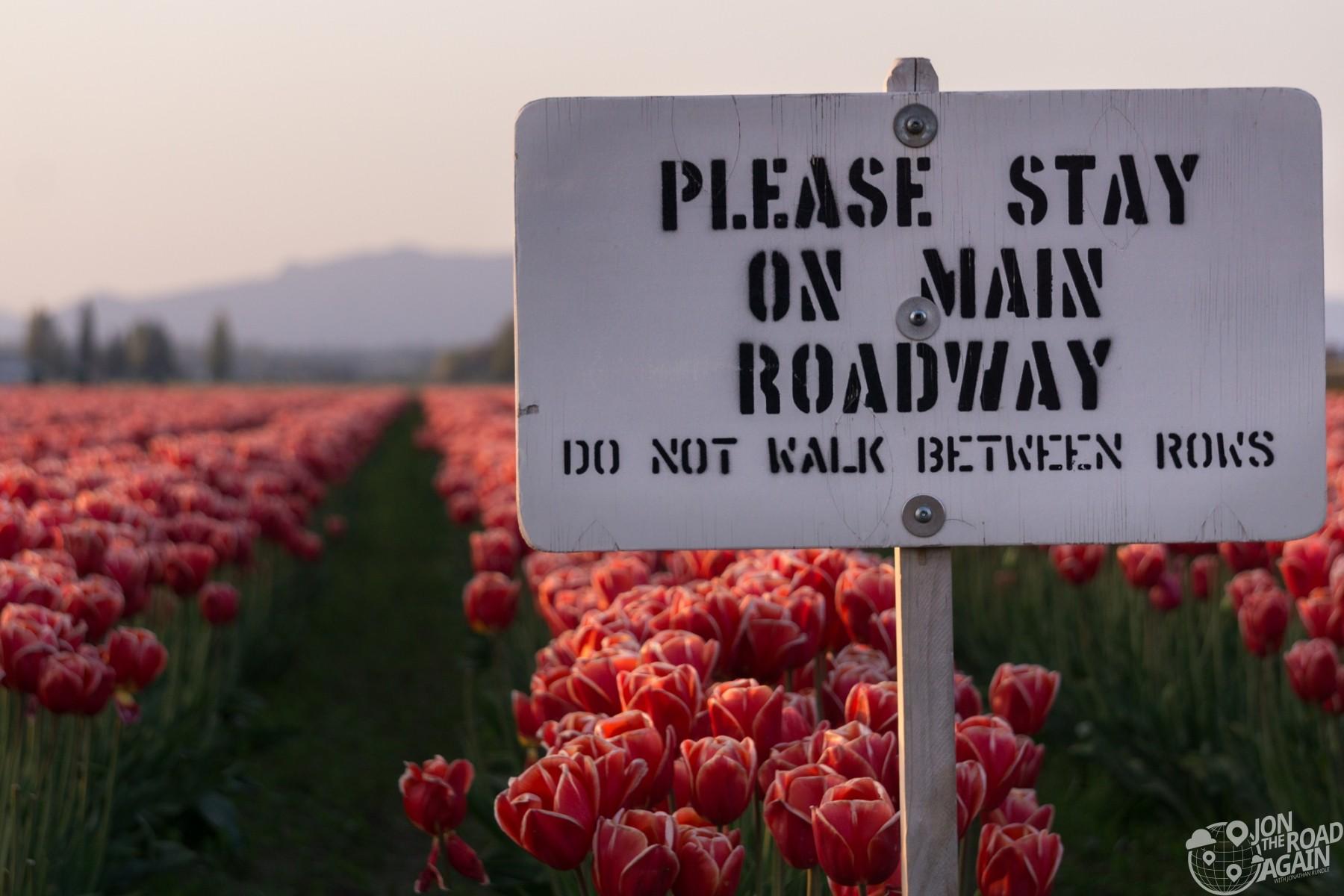 Skagit Valley Tulip Festival Sign