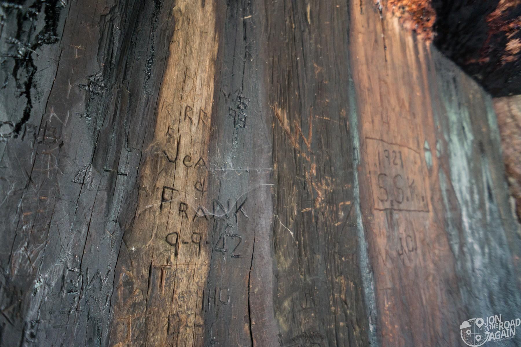 California Tunnel Tree carvings Yosemite