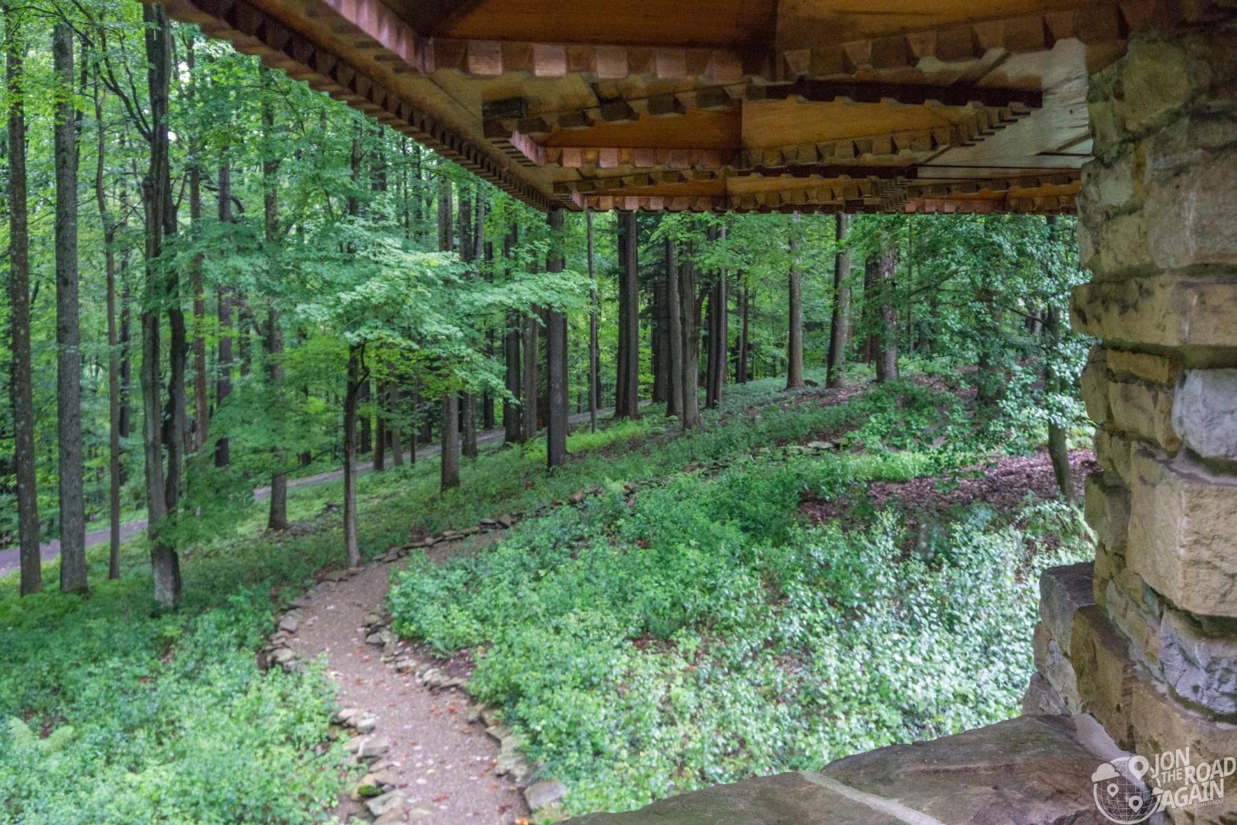 Kentuck Knob forest