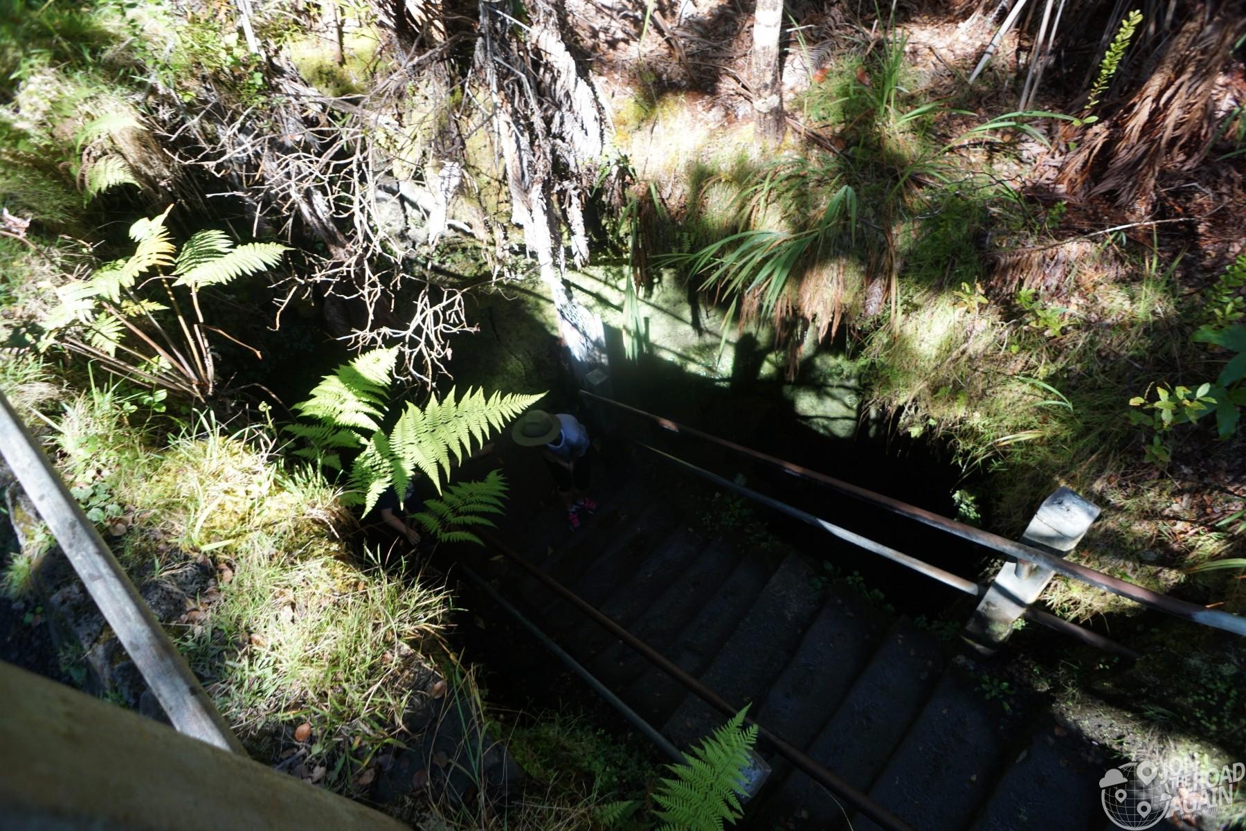 Thurston Lava Tube Entrance