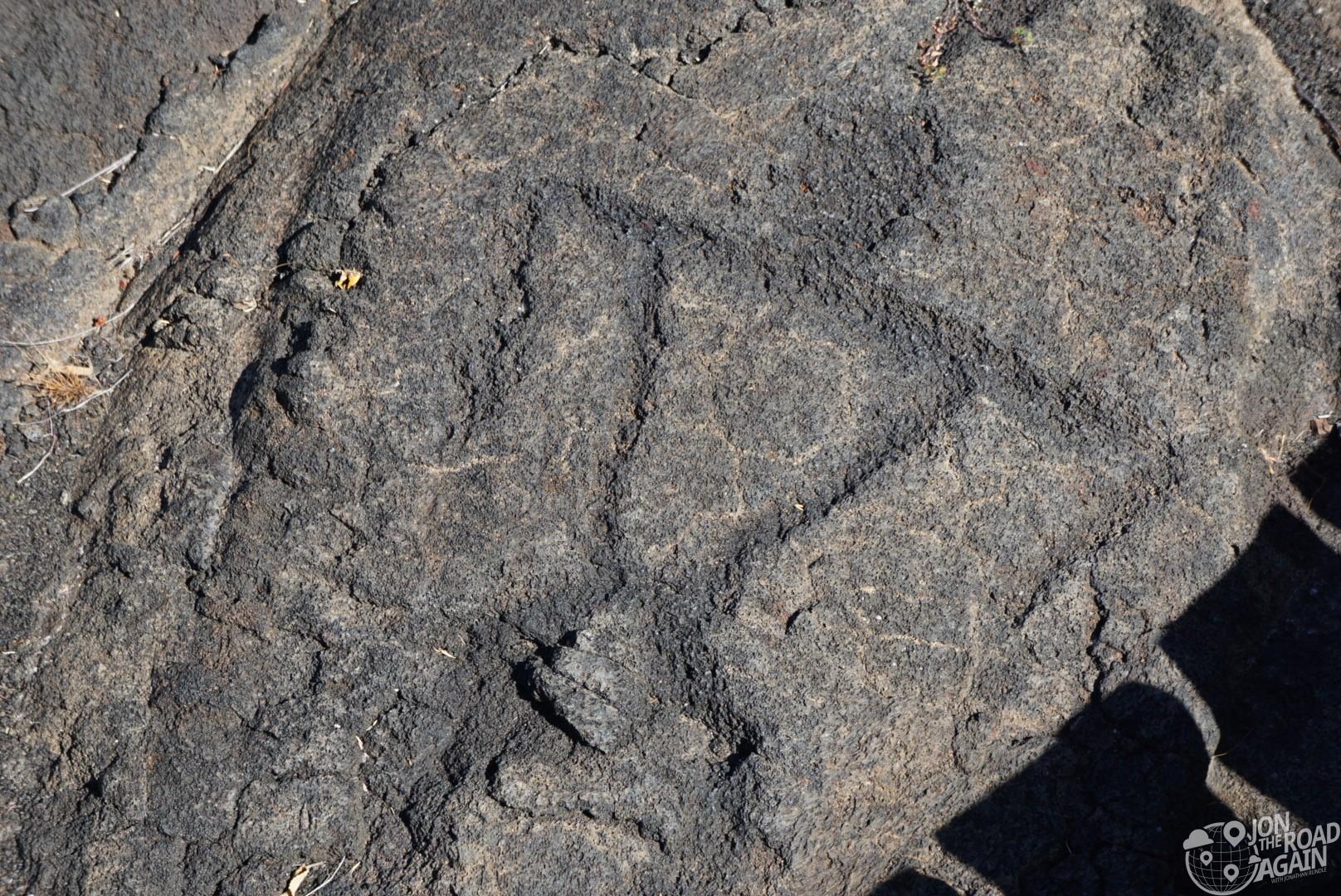 Petroglyphs volcano national park