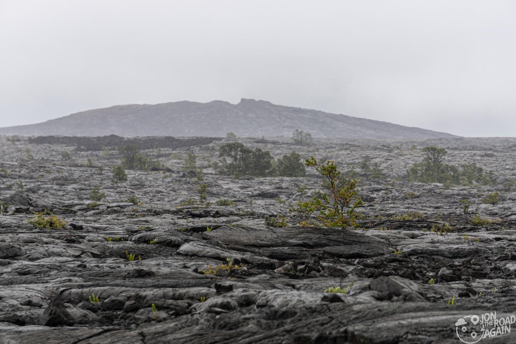 Mount Ulu lava field