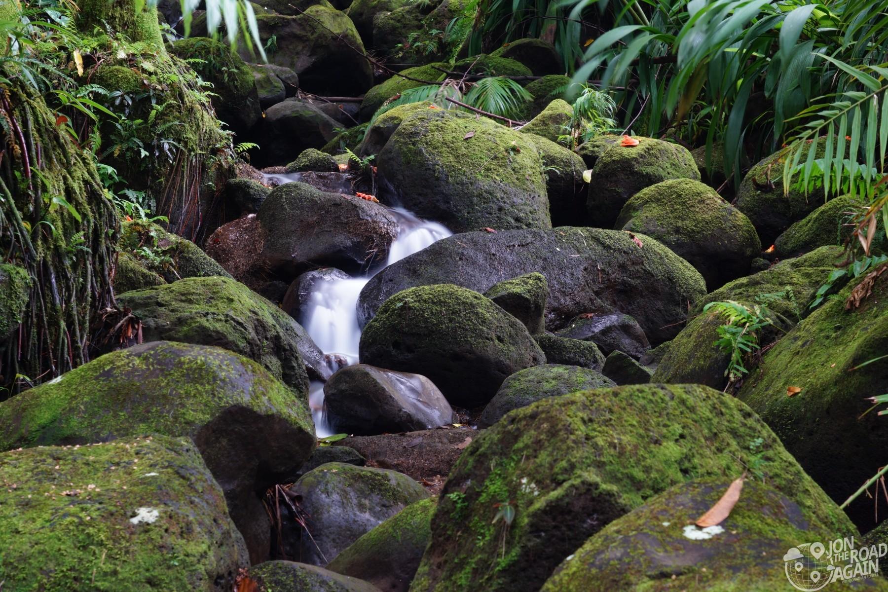 Hawaii Tropical Botanical Garden waterfall