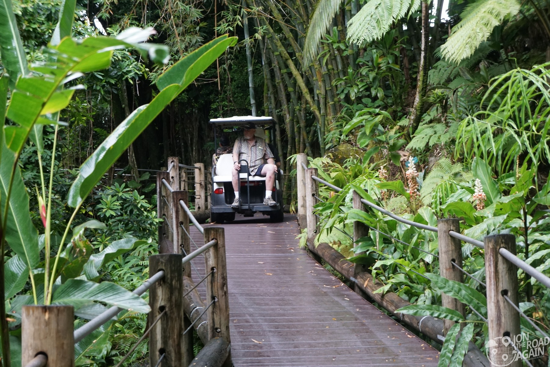 Hawaii Tropical Botanical Garden walkway