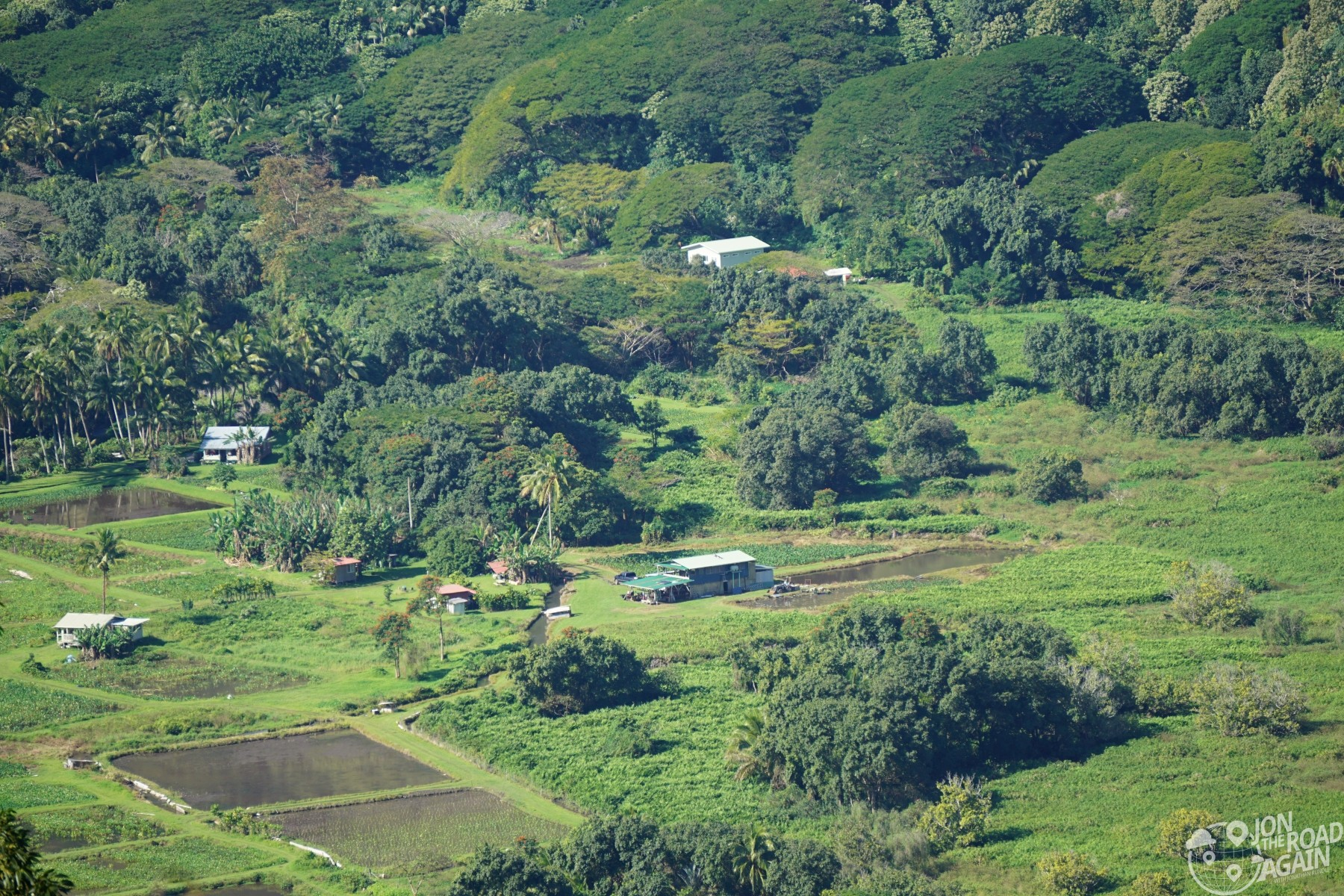 Waipio Valley Farm