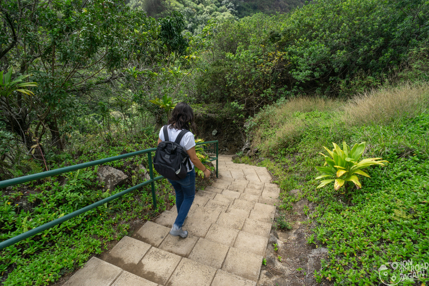 Iao Valley State Park Stairs