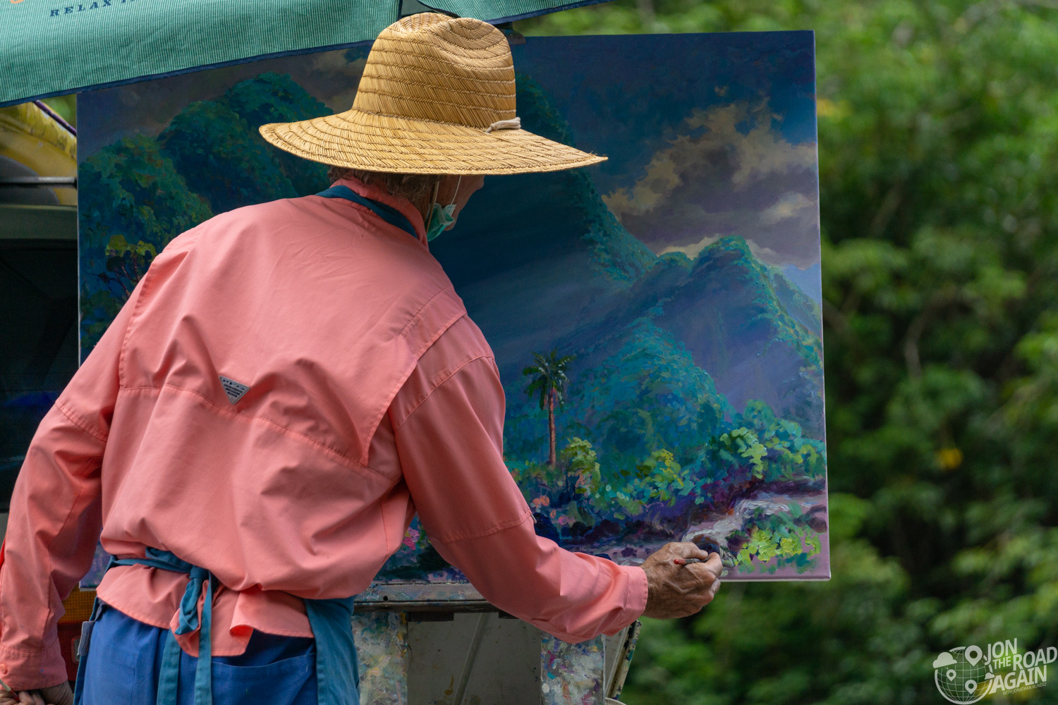 Iao Valley State Park Painter